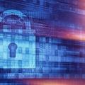 滴盾网络:高防服务器租用的安全标准是什么?