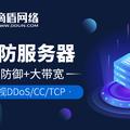 滴盾网络:东莞高防服务器是否值得购买?