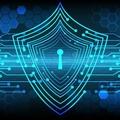 滴盾网络:公司如何实施有效的策略来防御DDoS攻击?