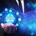 滴盾网络:多IP服务器有什么作用?