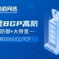 滴盾网络:东莞BGP高防服务器全新上线!