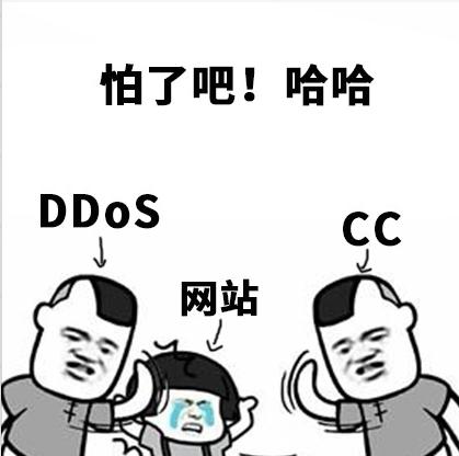 什么是cc,网站如何应对cc攻击?